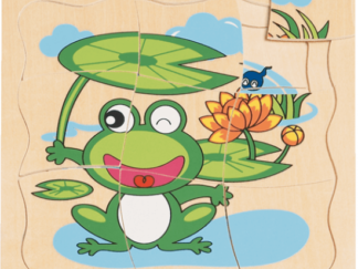 Puzzle - vývoj žáby